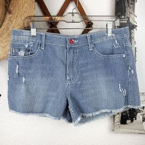 Urban Outfitters By Corpus Striped Denim Shorts 30